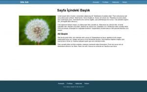 basit ornek html sayfa